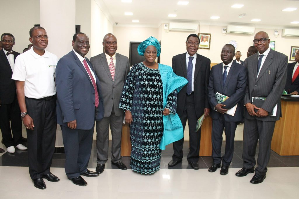 Mummy with Board of Directors